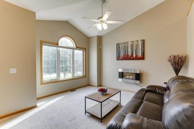Ham Lake Single Family Home For Sale: 4715 165th Avenue NE