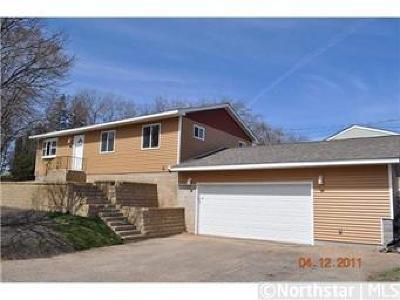 Minneapolis, Saint Paul Single Family Home For Sale: 59 Wheelock Parkway E