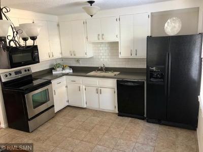 Saint Paul Single Family Home For Sale: 673 Portland Avenue