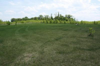 Litchfield Residential Lots & Land For Sale: Xxx 573