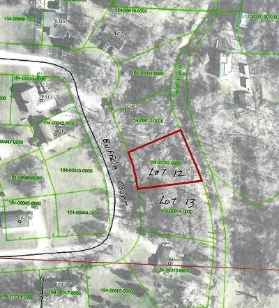 Nelson Residential Lots & Land For Sale: Lot 12 S Buffalo Court