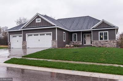Rochester Single Family Home For Sale: 3193 Yellow Rose Lane SW