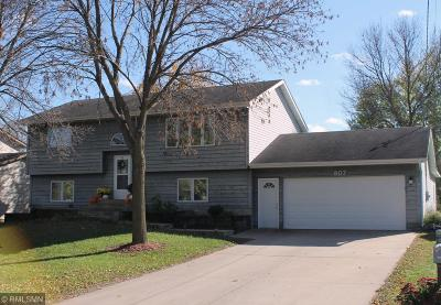 Single Family Home For Sale: 807 Park Street W