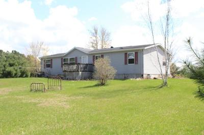 Pepin County Single Family Home For Sale: N1090 County Road N