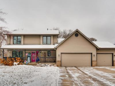 Inver Grove Heights Single Family Home Contingent: 2925 46th Court E
