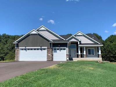 Ham Lake Single Family Home For Sale: 651 152nd Lane NE