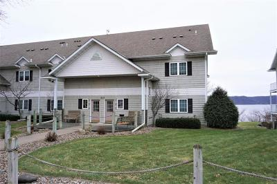 Pepin WI Condo/Townhouse For Sale: $269,900