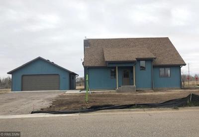 Saint Cloud Single Family Home For Sale: 4020 21st Avenue S