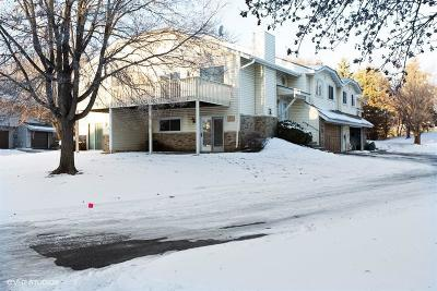 Burnsville Condo/Townhouse For Sale: 1044 Aston Circle