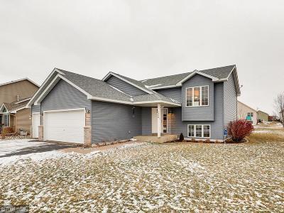 New Richmond Single Family Home For Sale: 1368 Mallard Lane