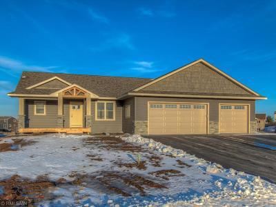 Single Family Home For Sale: 341 Dakota Avenue