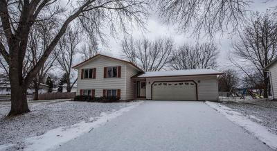Eagan Single Family Home For Sale: 2092 Cliffview Drive