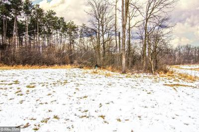 Spring Valley Residential Lots & Land For Sale: W972 Red Fox Run