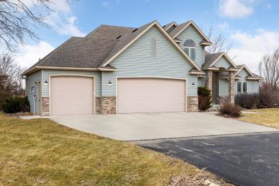 Oronoco Single Family Home For Sale: 695 Valley View Road SW