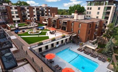 Minneapolis Condo/Townhouse For Sale: 48 Groveland Terrace #B211