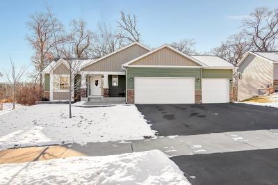 Elk River Single Family Home For Sale: 11340 196th Lane NW