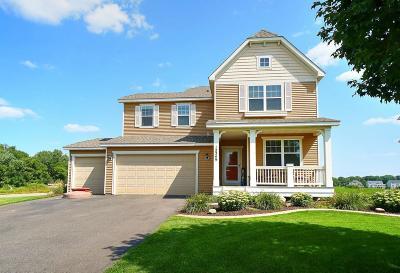 Blaine Single Family Home For Sale: 12349 5th Street NE