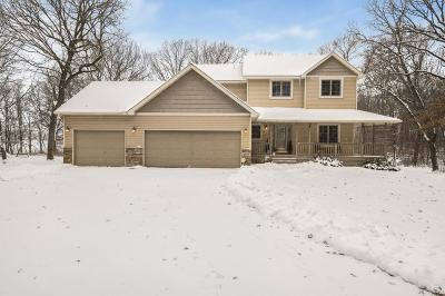 Isanti Single Family Home For Sale: 25270 Lincoln Drive NE