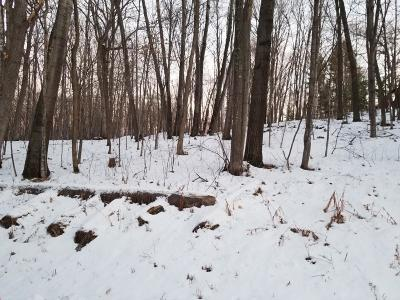 Menomonie Residential Lots & Land For Sale: 520th