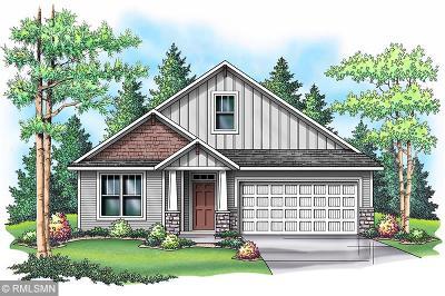 Blaine Single Family Home For Sale: 11375 Johnson Street NE