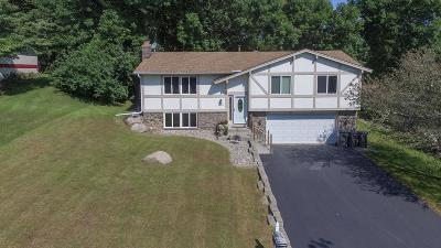 Eden Prairie Single Family Home For Sale: 12530 Tussock Court