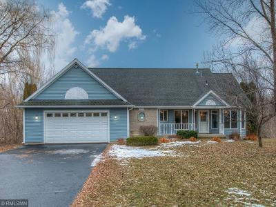 Single Family Home For Sale: 1153 County Road N