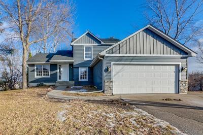 Prior Lake Single Family Home For Sale: 17247 Horizon Trail SE