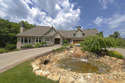 Medina Single Family Home For Sale: 2885 Trappers Trail