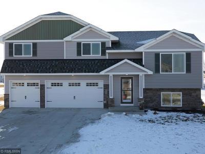 Single Family Home For Sale: 921 Cedar Avenue N