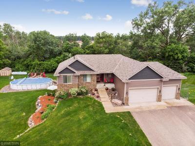 Lino Lakes Single Family Home For Sale: 5 Main Street