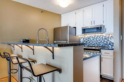 Minneapolis MN Condo/Townhouse For Sale: $149,900