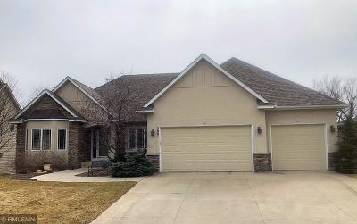 Prior Lake Single Family Home For Sale: 2801 Cougar Path NW