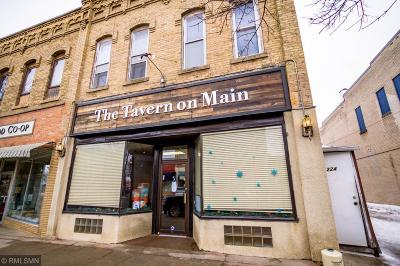 Commercial For Sale: 226 N Sibley Avenue