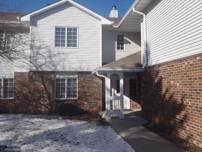 Eagan Condo/Townhouse For Sale: 3579 Blue Jay Way #201