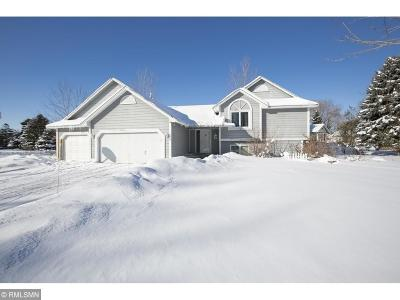 Waconia Single Family Home For Sale: 74 Lakeview Terrace Boulevard