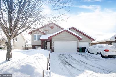 Blaine Single Family Home For Sale: 10604 Able Street NE