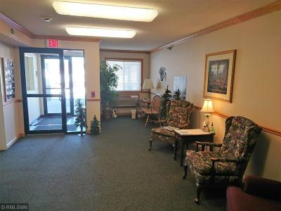 Stearns County Condo/Townhouse For Sale: 241 W Broadway Street #114