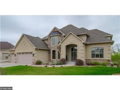 Otsego Single Family Home For Sale: 8883 Kahl Way NE