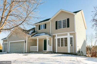Saint Michael Single Family Home For Sale: 217 Birch Avenue NW