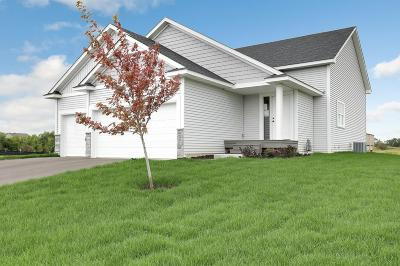 Forest Lake Single Family Home For Sale: 20910 Hardwood Road N