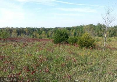 New Richmond Residential Lots & Land For Sale: Xxx 160th Avenue