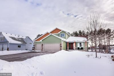 Chisago City Single Family Home For Sale: 8689 Preserve Boulevard N