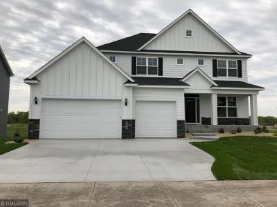 Anoka County Single Family Home For Sale: 2928 132nd Avenue NE