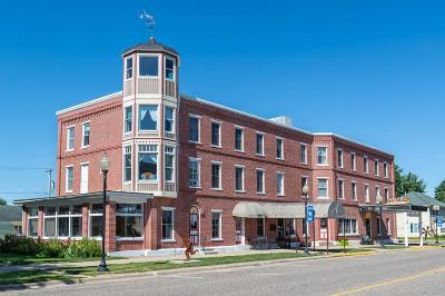 Wabasha Commercial For Sale: 333 Main Street W