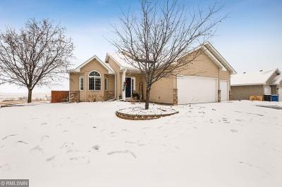 Albertville Single Family Home For Sale: 5061 Kahl Avenue NE