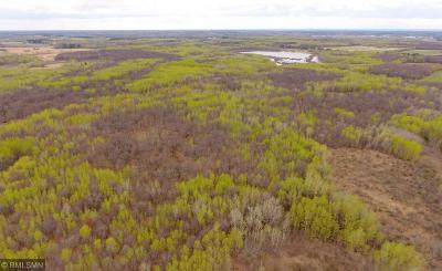 Brainerd Residential Lots & Land For Sale: 12849 Three Mile Road