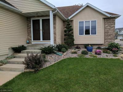 Rochester Single Family Home For Sale: 1156 Ashley Lane SW
