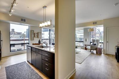 Minneapolis Rental For Rent: 643 N 5th #102