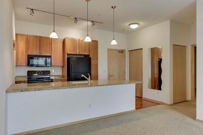 Saint Louis Park Condo/Townhouse For Sale: 4525 Park Commons Drive #422
