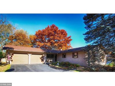 Apple Valley Single Family Home For Sale: 119 Shoshoni Trail